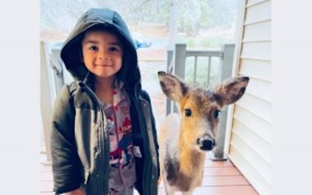 外で遊び終えた4歳男児、小鹿を連れて帰宅 → ネット『目の純粋さが同じ』『2人とも嬉しそう』