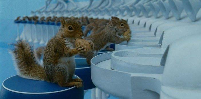 【話題】『「チャーリーとチョコレート工場」で一番狂っているのは…』